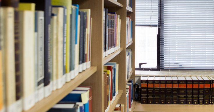 Terra Tavares escritório